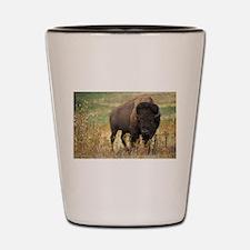 Bison Shot Glass