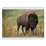 Buffalo Calendars