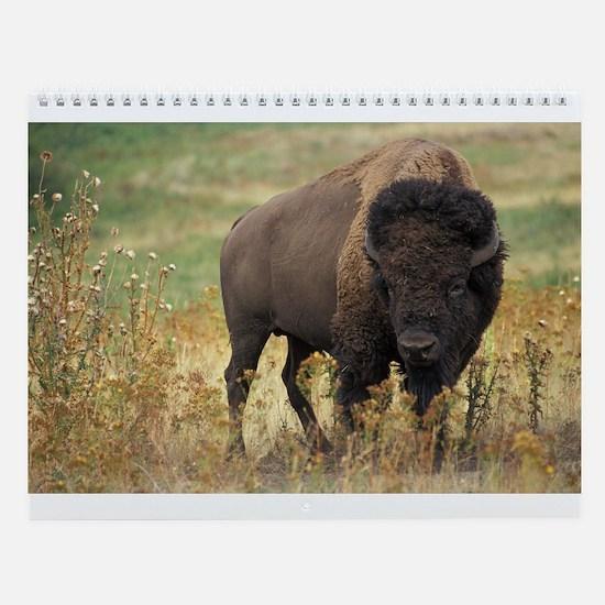 Bison Wall Calendar