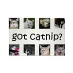 Got catnip Rectangle Magnet