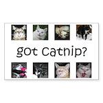Got catnip Rectangle Sticker