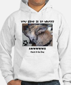 You Gave it to Who?!? Hoodie