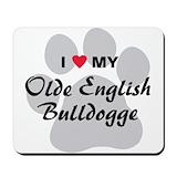 Olde english bulldogge Office