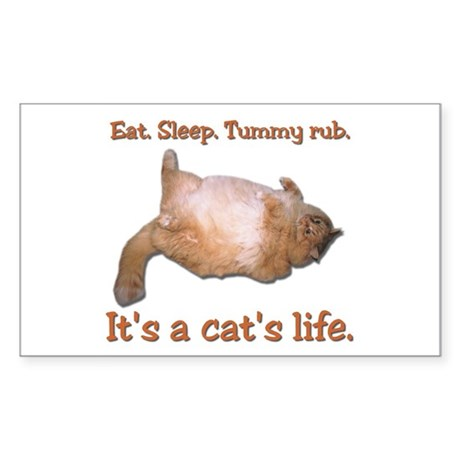 Orange Cat Rectangle Sticker
