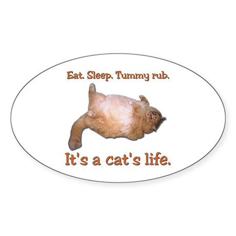 Orange Cat Oval Sticker