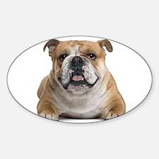 Cute Bulldog Decal