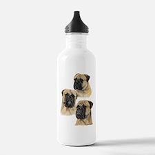 Three Bullmastiff Heads Water Bottle