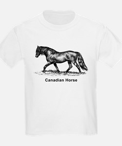 Canadian Horse T-Shirt