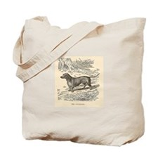Dachsund Dog Vintage Art Canvas Tote Bag