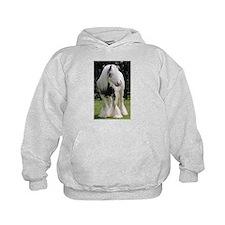 Gypsy Horse Stallion Hoodie