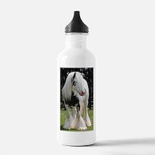 Gypsy Horse Stallion Water Bottle
