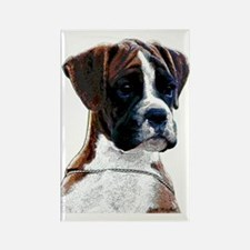 Brindle Boxer Puppy Rectangle Magnet (10 pack)