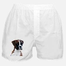 Brindle Boxer Puppy Boxer Shorts