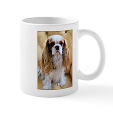 Cuddly Cavalier Chester's Mug
