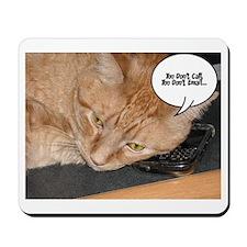 Orange Tabby Cat Humor Mousepad