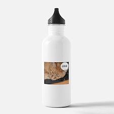 Orange Tabby Cat Humor Water Bottle
