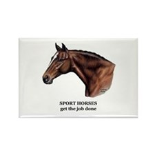 Sport Horse Rectangle Magnet