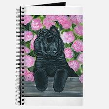 Belgian Sheepdog Fence Pup Journal