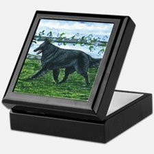 Belgian Sheepdog Patrol Keepsake Box