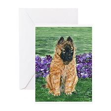 Belgian Tervuren Puppy Greeting Card