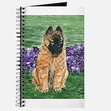 Belgian Tervuren Puppy Journal