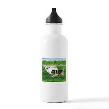 Belgian Tervuren Herding Water Bottle