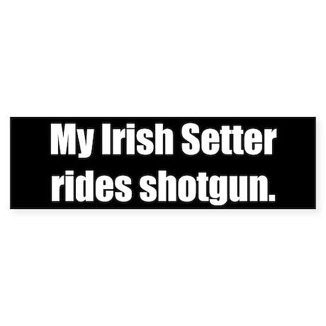 My Irish Setter rides shotgun (Bumper Sticker)