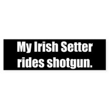 My Irish Setter rides shotgun (Bumper Sticker)