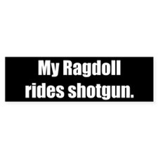 My Ragdoll rides shotgun (Bumper Sticker)