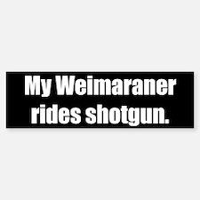 My Weimaraner rides shotgun (Bumper Sticker)