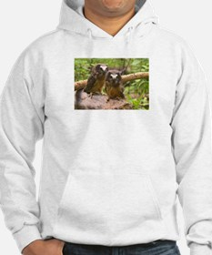 Baby Saw Whet Owls Hoodie