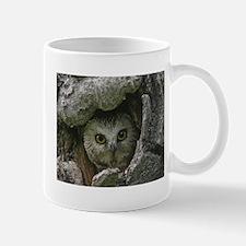 Saw Whet Owl 2 Mug