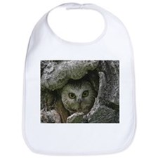 Saw Whet Owl 2 Bib
