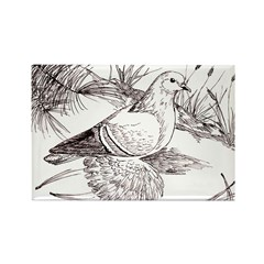 Saxon Field Pigeon Rectangle Magnet (10 pack)