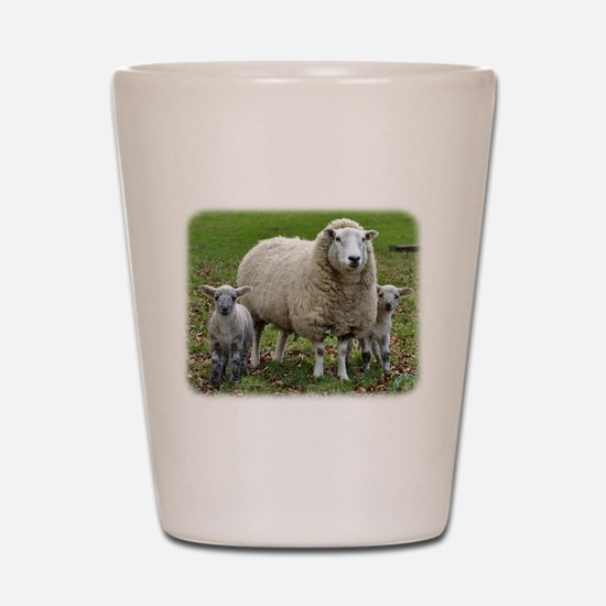 Sheep and Lambs 9R12D-35 Shot Glass
