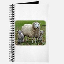 Sheep and Lambs 9R12D-35 Journal