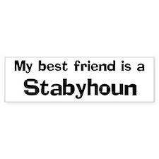 Best friend: Stabyhoun Bumper Bumper Sticker