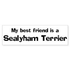 Best friend: Sealyham Terrier Bumper Car Sticker