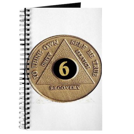 6 YEAR COIN Journal