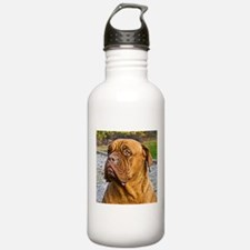 Dogue de Bordeaux Sports Water Bottle