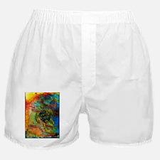 Green Turtle Boxer Shorts