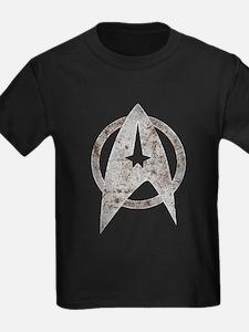 Vintage Starfleet Badge T
