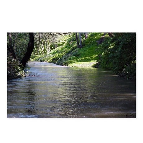 San Leandro Creek Postcards (Package of 8)