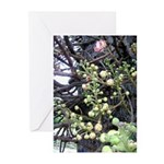 Lonely Bloom Greeting Cards (Pk of 10)