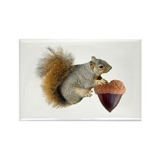 Squirrel Acorn Heart Rectangle Magnet