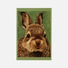 Baby Cottontail Rectangle Magnet