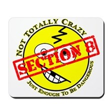 Section 8 Mousepad