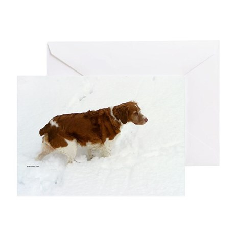 Brittany Spaniel Christmas Greeting Card
