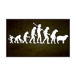 Modern Evolution 38.5 x 24.5 Wall Peel