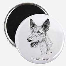 Ibizan Hound Magnet
